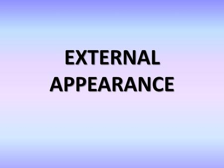 EXTERNAL APPEARANCE. External appearance The importance of appearance in society Stereotypes by appearance Dress code Dress code in business.