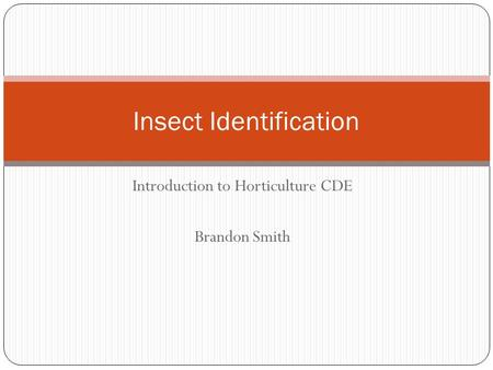 Introduction to Horticulture CDE Brandon Smith Insect Identification.