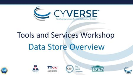 Transforming Science Through Data-driven Discovery Tools and Services Workshop Data Store Overview.