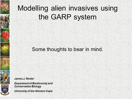 Modelling alien invasives using the GARP system Some thoughts to bear in mind. James J. Reeler Department of Biodiversity and Conservation Biology University.