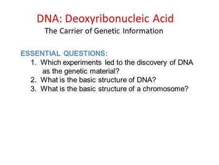 DNA: Deoxyribonucleic Acid The Carrier of Genetic Information ESSENTIAL QUESTIONS: 1. Which experiments led to the discovery of DNA as the genetic material?