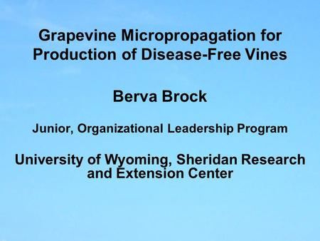 Grapevine Micropropagation for Production of Disease-Free Vines