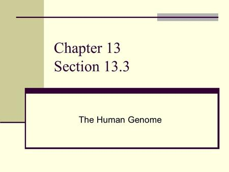 Chapter 13 Section 13.3 The Human Genome. Genomes contain all the information needed for an organism to grow and survive The Human Genome Project (HGP)