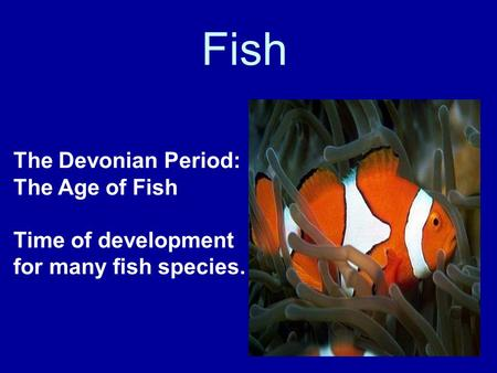 Fish The Devonian Period: The Age of Fish Time of development for many fish species.
