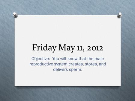 Friday May 11, 2012 Objective: You will know that the male reproductive system creates, stores, and delivers sperm.