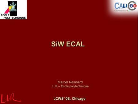 SiW ECAL Marcel Reinhard LLR – École polytechnique LCWS '08, Chicago.