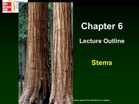 Chapter 6 Lecture Outline Stems Copyright © The McGraw-Hill Companies, Inc. Permission required for reproduction or display.