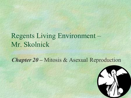 Regents Living Environment – Mr. Skolnick Chapter 20 – Mitosis & Asexual Reproduction.