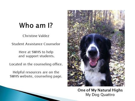 Who am I? Christine Valdez Student Assistance Counselor Here at SWHS to help and support students. Located in the counseling office. Helpful resources.