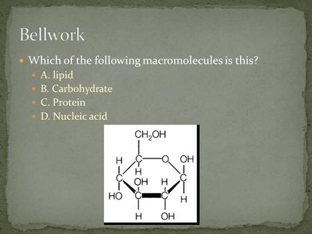 Which of the following macromolecules is this? A. lipid B. Carbohydrate C. Protein D. Nucleic acid.