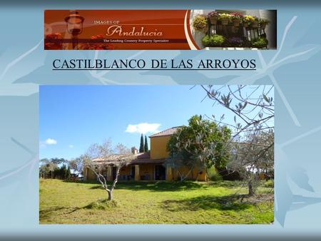 CASTILBLANCO DE LAS ARROYOS. Castilblanco de las Arroyos A beautiful finca surrounded by olive groves and cork oak forest. The cortijo was built in 2000.