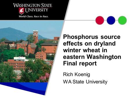 Rich Koenig WA State University Phosphorus source effects on dryland winter wheat in eastern Washington Final report.