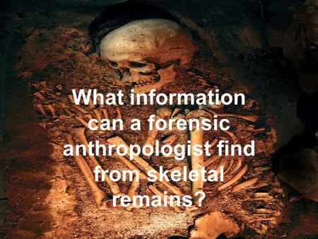 What information can a forensic anthropologist find from skeletal remains?
