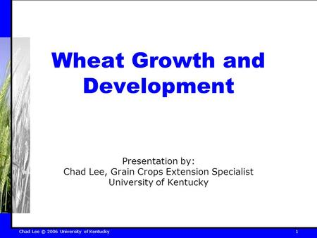 Chad Lee © 2006 University of Kentucky 1 Wheat Growth and Development Presentation by: Chad Lee, Grain Crops Extension Specialist University of Kentucky.