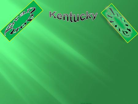Hiii. THAT IS THE KENTUCKY STATE FLAG.  The nick name is Bluegrass State. The early settlers found blue grass growing on the Kentucky rich limestone.