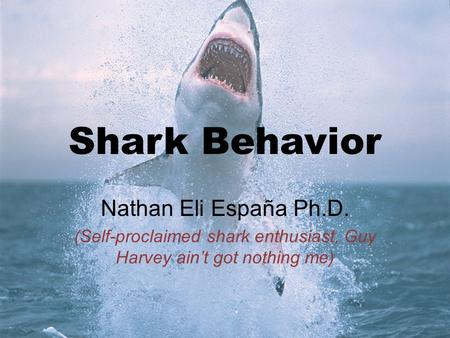 Shark Behavior Nathan Eli España Ph.D. (Self-proclaimed shark enthusiast, Guy Harvey ain't got nothing me)
