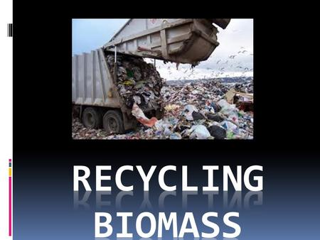 biomass – organic matter that is alive or was once alive vocabulary words!