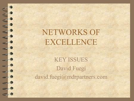 NETWORKS OF EXCELLENCE KEY ISSUES David Fuegi