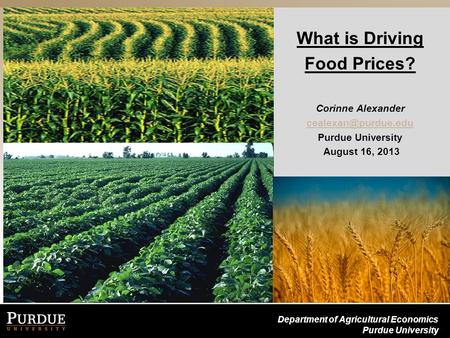 Department of Agricultural Economics Purdue University What is Driving Food Prices? Corinne Alexander Purdue University August 16,