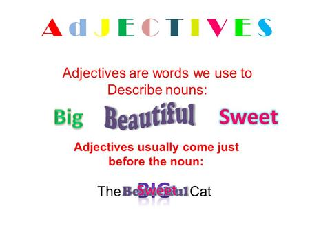 Adjectives usually come just before the noun: