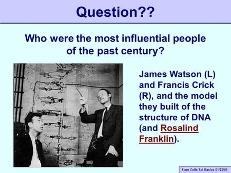 Stem Cells Sci Basics 01/23/06 Question?? Who were the most influential people of the past century? James Watson (L) and Francis Crick (R), and the model.