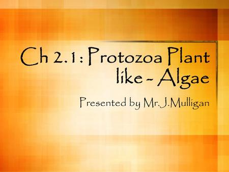 Ch 2.1: Protozoa Plant like - Algae Presented by Mr.J.Mulligan.