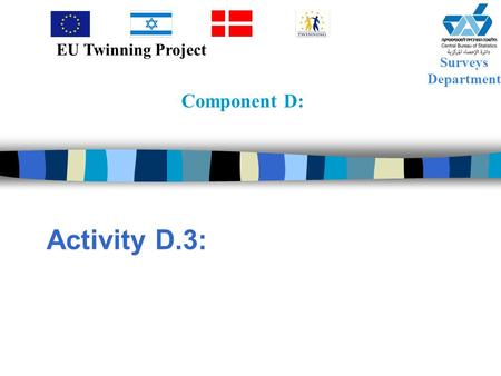Component D: Activity D.3: Surveys Department EU Twinning Project.