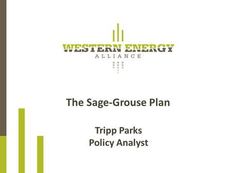 The Sage-Grouse Plan Tripp Parks Policy Analyst. GREATER SAGE-GROUSE The Greater Sage-Grouse (GrSG) is a large ground-dwelling bird that inhabits 186.
