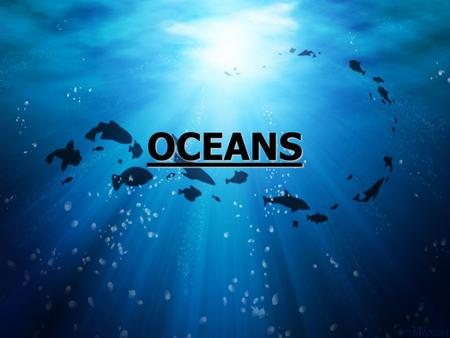 OCEANS. Salt water – not fresh water 75% of Earth Plants – 50% world's oxygen.