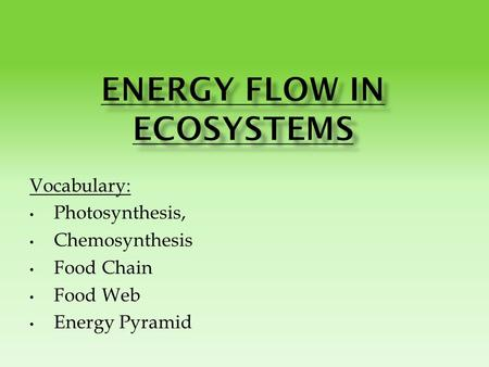 Vocabulary: Photosynthesis, Chemosynthesis Food Chain Food Web Energy Pyramid.