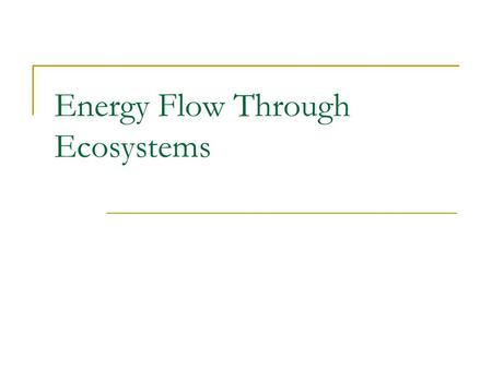 Energy Flow Through Ecosystems. Ecosystem and Energy Roles Ecosystem: all living & non-living things that interact in an environment Energy Role in an.
