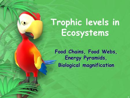 1 Trophic levels in Ecosystems Food Chains, Food Webs, Energy Pyramids, Biological magnification.