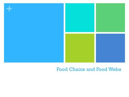 + Food Chains and Food Webs. + DO NOW TUESDAY Create a food chain using the following organisms: