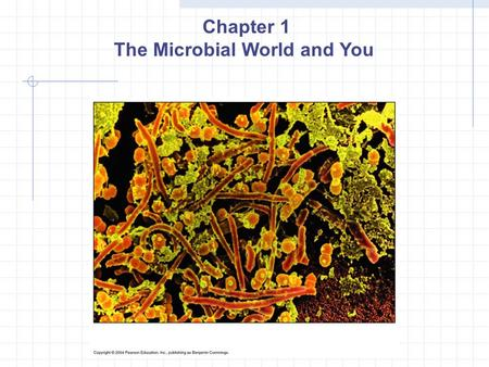 Chapter 1 The Microbial World and You. Agenda Read: Intro, Section 1, Section 2, Section 3, Section 4 Answer: 1. What is spontaneous generation and what.
