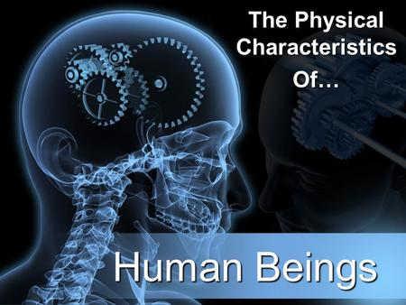 Human Beings The Physical Characteristics Of…. Bi-Pedalism What is bi-pedalism? –Walking upright (erect) on two feet How is our anatomy designed for bi-