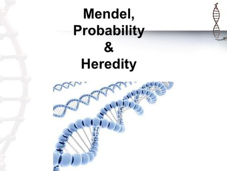"Mendel, Probability & Heredity. GREGOR MENDEL ""The Father of Genetics"" Genetics: The study of heredity. Heredity: The passing of genes/characteristics."