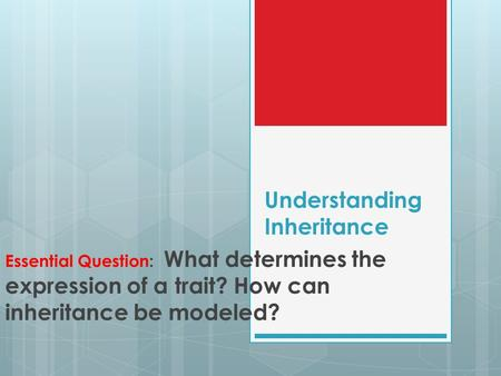 Understanding Inheritance Essential Question: What determines the expression of a trait? How can inheritance be modeled?