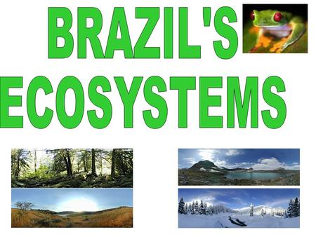 To know what a ecosystem is. To be able to describe in detail the tropical rainforest ecosystem.