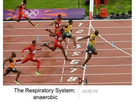 GCSE PE The Respiratory System: anaerobic. AIMS: *Understand anaerobic respiration and exercise that require it. *Know what takes place during recovery.