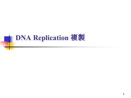 1 DNA Replication 複製. Ex Biochem c18-DNA replication 2 18.2 DNA Polymerases Are the Enzymes That Make DNA DNA is synthesized in both semiconservative.