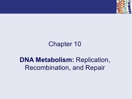 Chapter 10 DNA Metabolism: Replication, Recombination, and Repair.