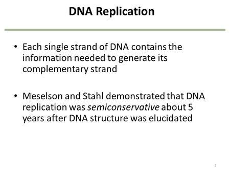 DNA Replication Each single strand of DNA contains the information needed to generate its complementary strand Meselson and Stahl demonstrated that DNA.