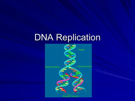 DNA Replication. DNA Deoxyribonucleic Acid Polymer of nucleotides Each nucleotides has 3 parts: 1.2.3.