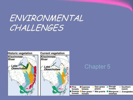 Chapter 5 ENVIRONMENTAL CHALLENGES. A. Challenges To The Air 1. Air Pollution Air pollutants include heavy metals (lead), particulates (asbestos) & emissions.