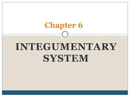 INTEGUMENTARY SYSTEM Chapter 6. QOD #1/Pre-Quiz 1. T/F The integumentary system only refers to your skin. 2. T/F Your skin contains a waterproofing protein.