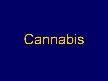 Cannabis. The most widely used illicit drug The drug most likely to be seen in General Practice Generally an experimental or recreational drug, but the.
