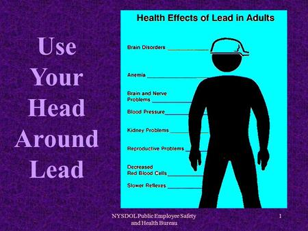 NYSDOL Public Employee Safety and Health Bureau 1 Use Your Head Around Lead.