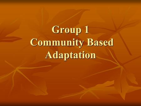 Group 1 Community Based Adaptation. The Process Presented two case studies Presented two case studies Case studies came with a set of research questions.