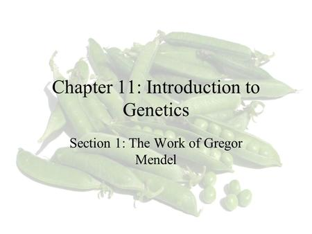 Chapter 11: Introduction to Genetics Section 1: The Work of Gregor Mendel.