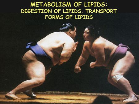 METABOLISM OF LIPIDS: DIGESTION OF LIPIDS. TRANSPORT FORMS OF LIPIDS.